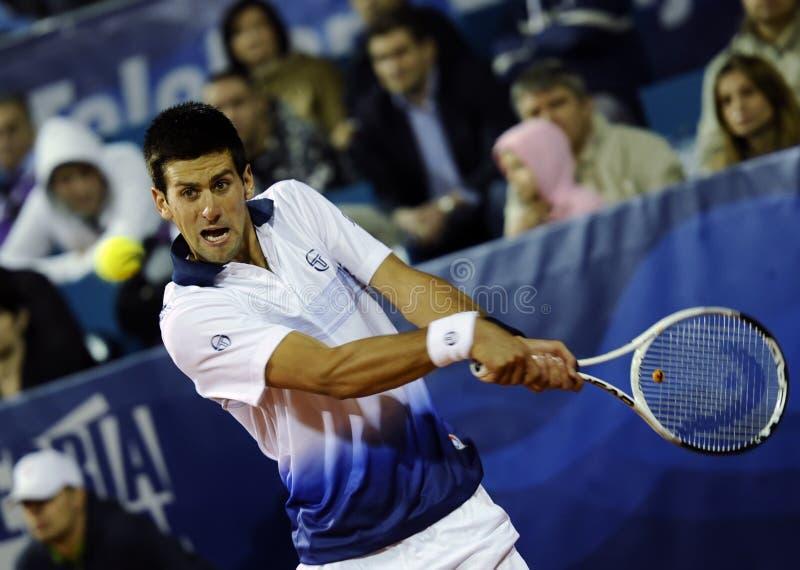 Novak Djokovic wraca piłkę podczas Serbia Otwartego dopasowania przeciw Fabio Fognini zdjęcie royalty free