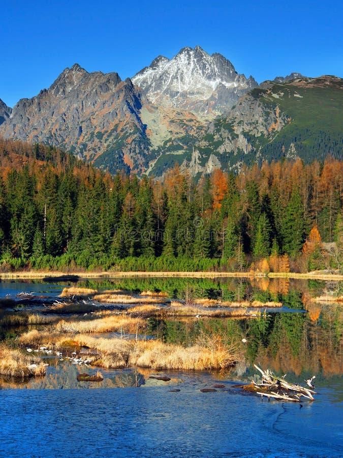 Nove Strbske Pleso, alto Tatras in autunno fotografie stock libere da diritti