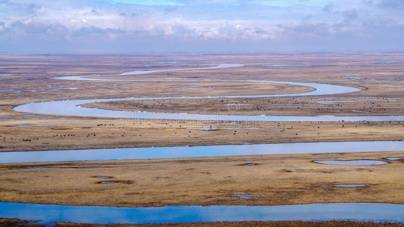 Nove voltas e dezoito curvaturas do rio de Kaidu em Bayanbulak na mola fotos de stock