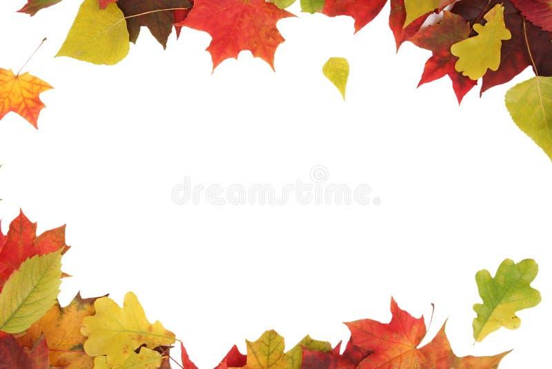 Download November stock afbeelding. Afbeelding bestaande uit aanplakbiljet - 10782077