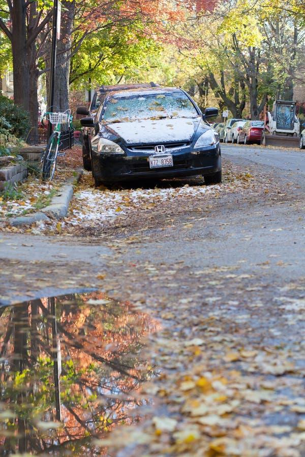 November stock afbeeldingen