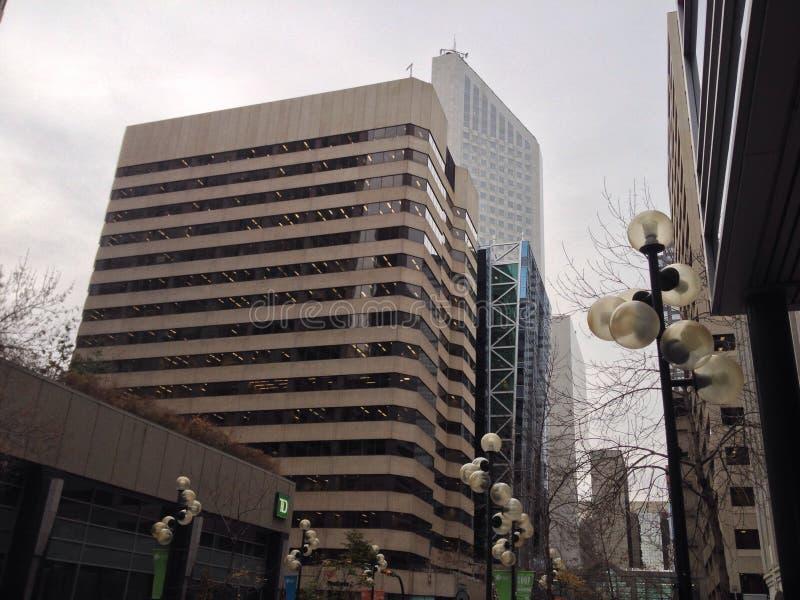 November 2008 lizenzfreie stockfotografie