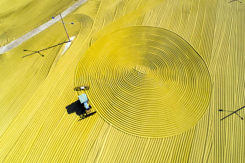 Aerial photo of paddy harvest in rural China. royalty free stock photo
