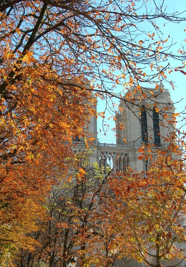 November i Paris, Notre Dame royaltyfri fotografi