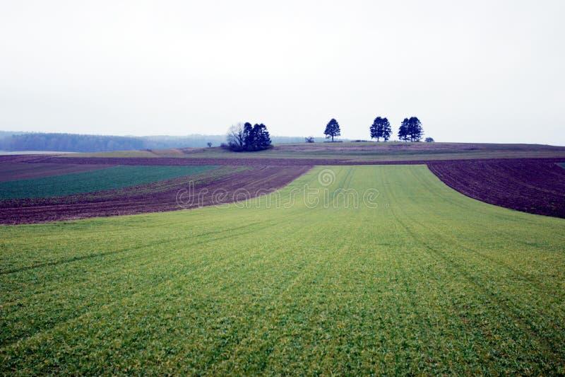 Download November landscape stock image. Image of natural, grey, field - 9363
