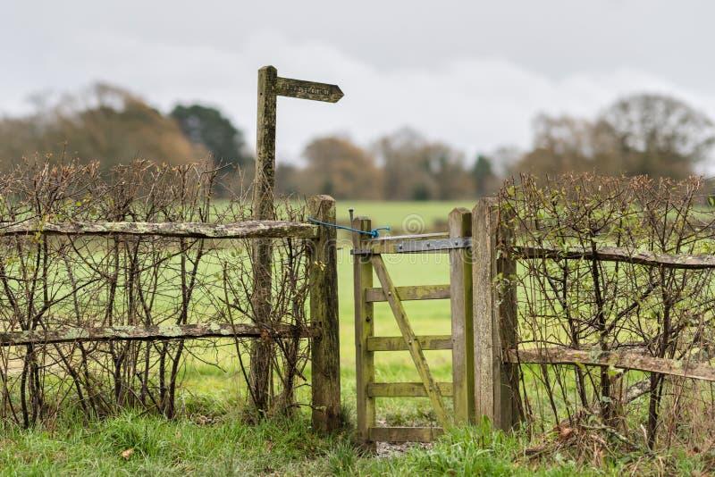 November vandringsled, mitt- Sussex, UK arkivfoton