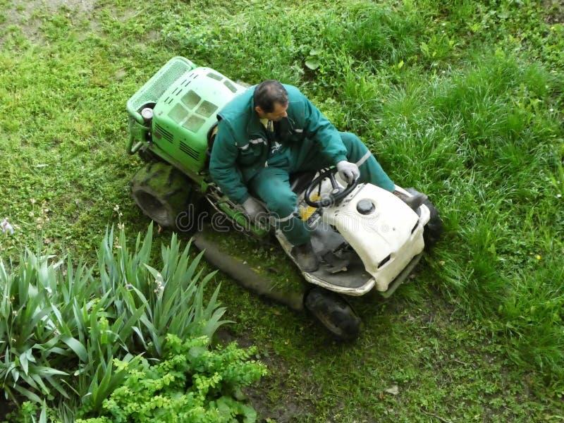 Novi Sad Maj 10th 2019 - Man på en rida gräsklippare som har gräs som klibbas till hjulen V?r och utomhus- underh?ll f?r sommar royaltyfria foton