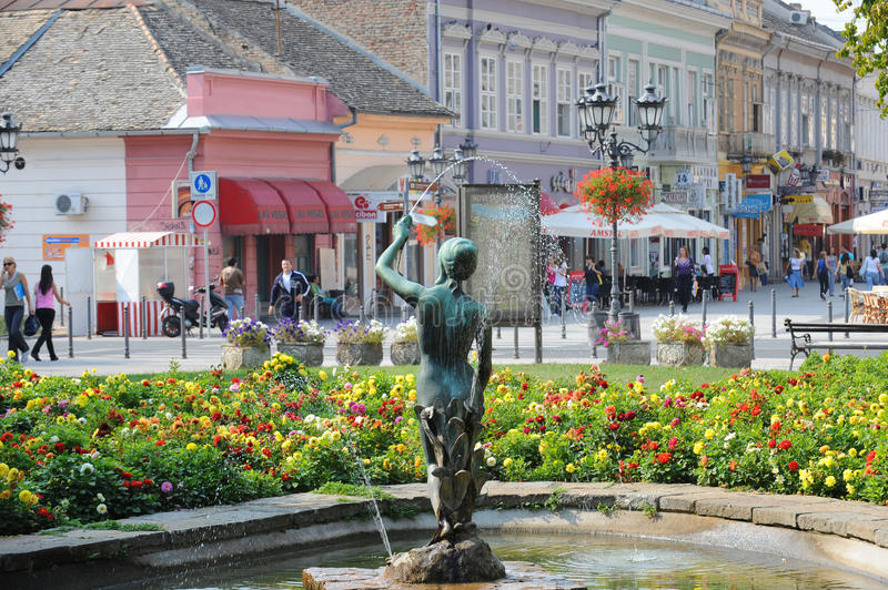 Novi Sad, Serbia royalty free stock photo