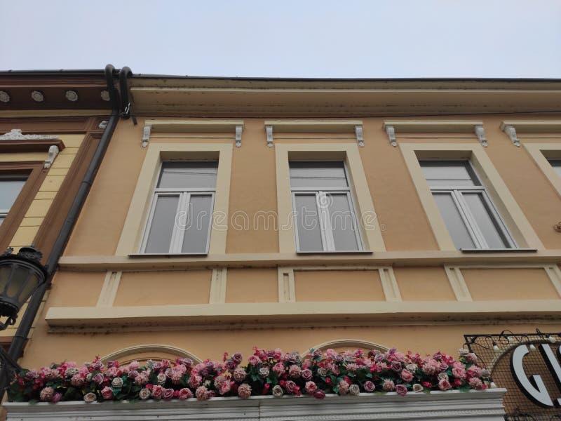 Novi Sad Serbien dekorerad fasad med blomma i stadskärnan fotografering för bildbyråer