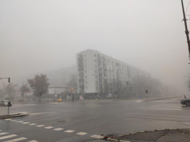 Novi Sad Serbiens centrum i dimma arkivfoton