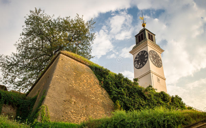 Novi Sad - vecchia torre di orologio fotografie stock libere da diritti