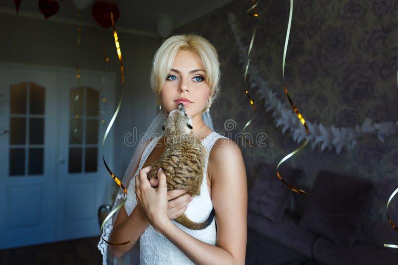 Novia con el meerkat fotografía de archivo