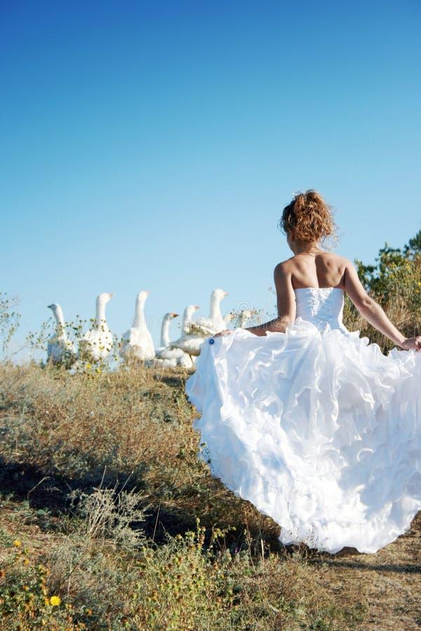 Novia con los pájaros blancos imagen de archivo
