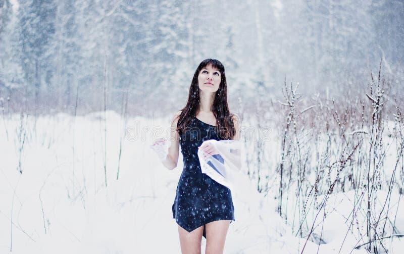 Novia hermosa debajo del velo en el fondo blanco de la nieve imagenes de archivo