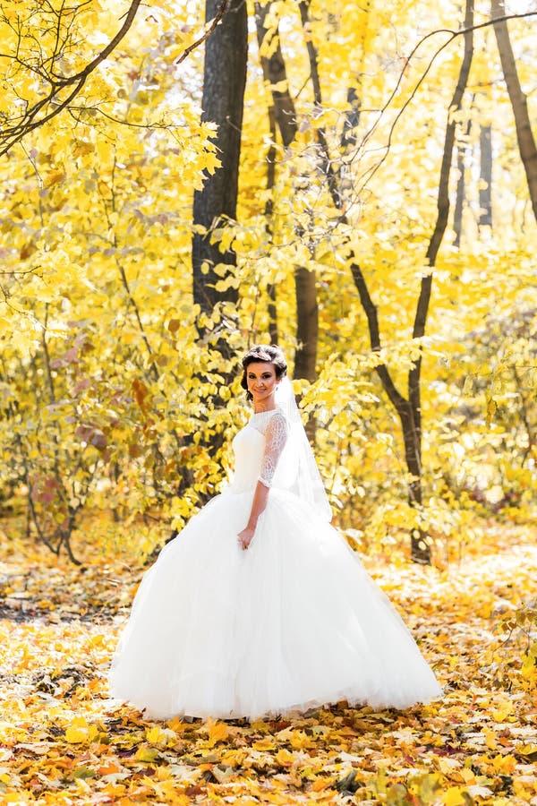 Novia hermosa en el parque del otoño fotos de archivo libres de regalías