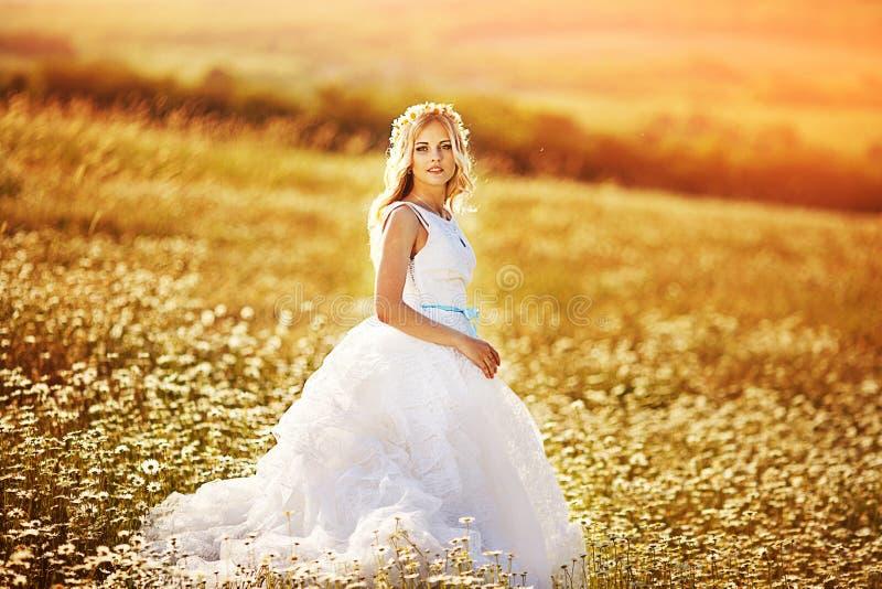 Novia hermosa en un campo foto de archivo libre de regalías