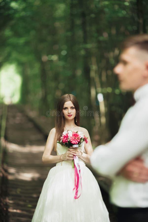 Novia hermosa que presenta en su día de boda en parque foto de archivo libre de regalías