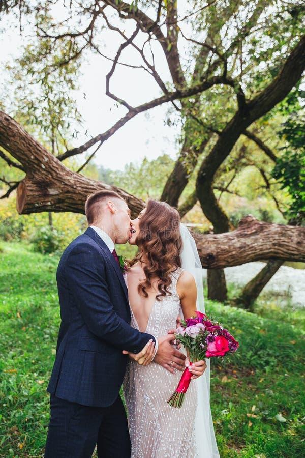 Novia hermosa y novio del recién casado que se besan en parque fotografía de archivo libre de regalías