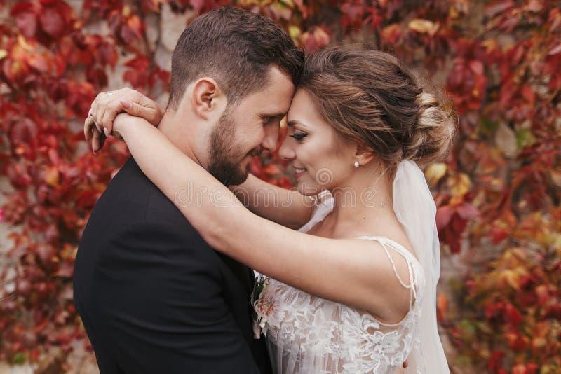 Novia magnífica y novio elegante que abrazan y que sonríen suavemente en w imagenes de archivo