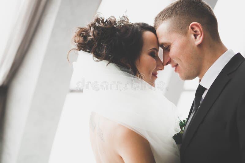 Novia perfecta de los pares, novio que presenta y que se besa en su día de boda imágenes de archivo libres de regalías