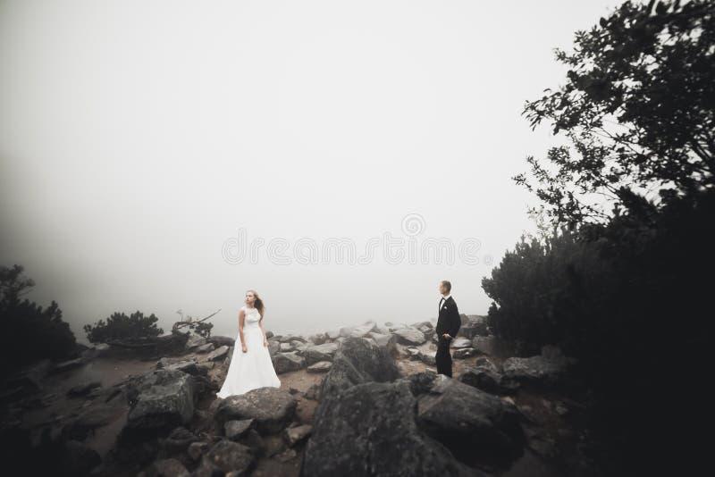 Novia perfecta de los pares, novio que presenta y que se besa en su día de boda imagen de archivo