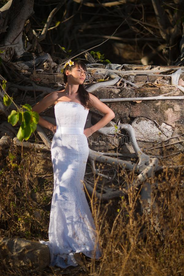 Novia que presenta en el medio de árboles tropicales en las montañas foto de archivo libre de regalías