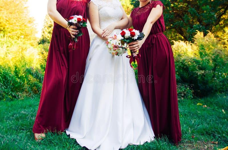 Novia y damas de honor hispánicas en fila imagen de archivo libre de regalías