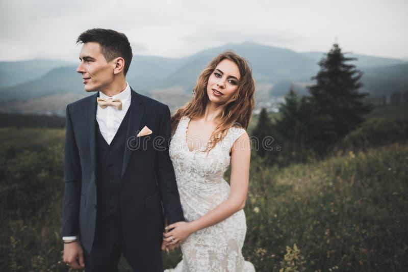 Novia y novio de los pares de la boda que llevan a cabo las manos fotografía de archivo