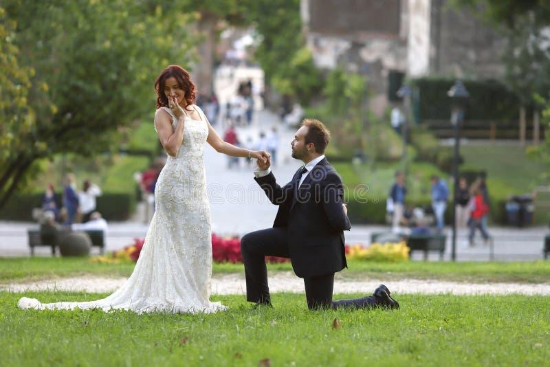 Novia y novio elegantes en un parque en su d?a que se casa Historia de amor hermosa en la naturaleza, par en amor fotos de archivo libres de regalías