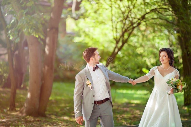 Novia y novio en besarse del parque los recienes casados novia y novio de los pares en una boda en bosque del verde de la natural fotografía de archivo