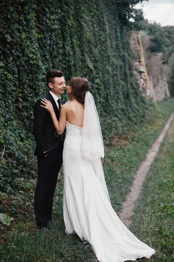 Novia y novio en besarse del parque los recienes casados novia y novio de los pares en una boda en naturaleza est?n besando el re imagen de archivo libre de regalías
