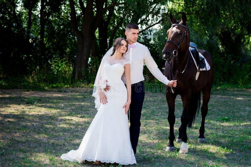 Novia y novio en bosque con los caballos Pares de la boda Retrato hermoso en naturaleza fotografía de archivo libre de regalías