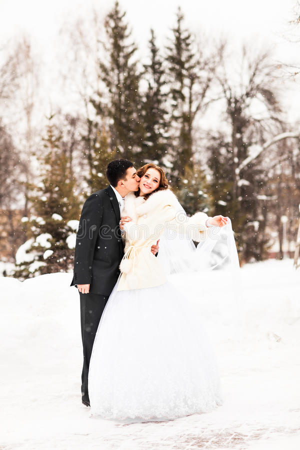 Novia y novio en el invierno fotografía de archivo
