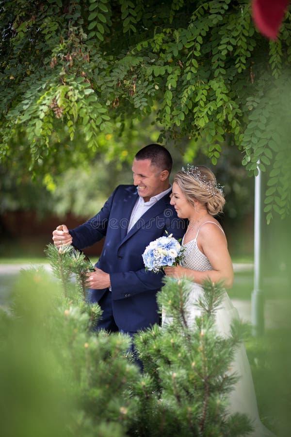Novia y novio en la boda con champán fotos de archivo