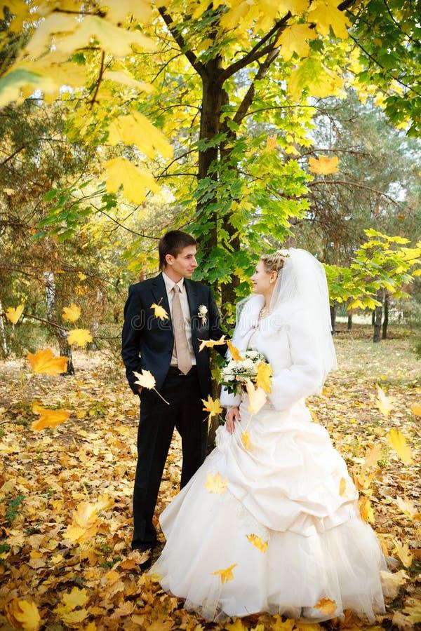 Novia y novio en otoño fotografía de archivo libre de regalías