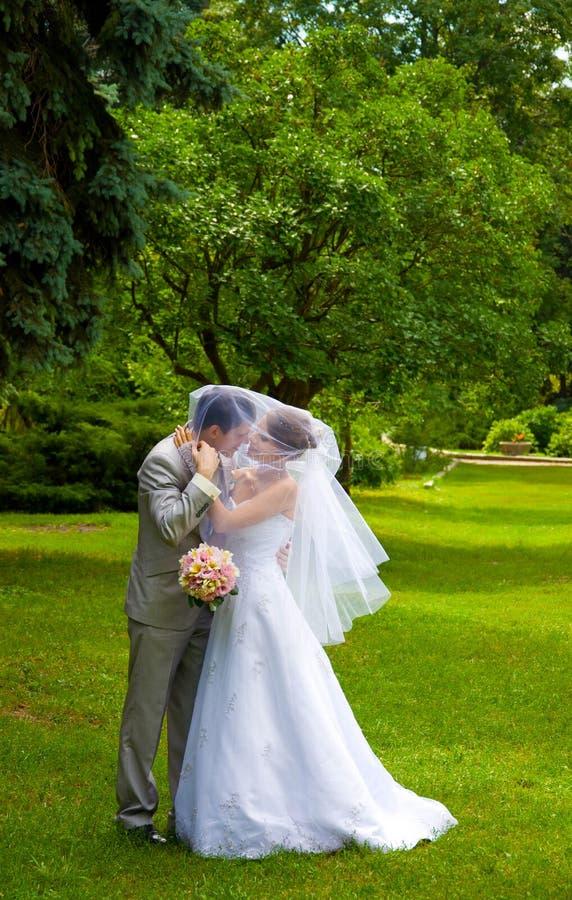 Novia y novio en parque imagen de archivo libre de regalías