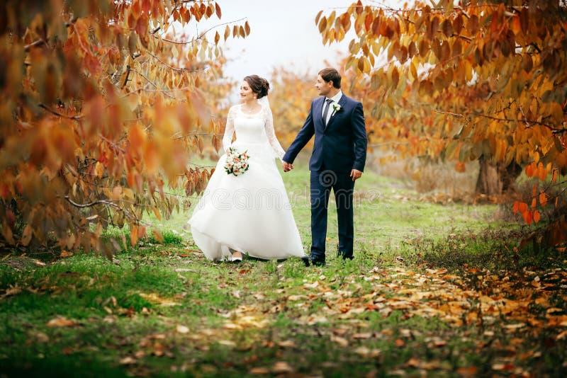 Novia y novio felices en su boda imagen de archivo
