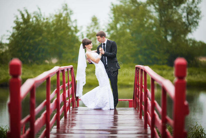 Novia y novio felices en un puente de madera en el parque en el wedd fotos de archivo