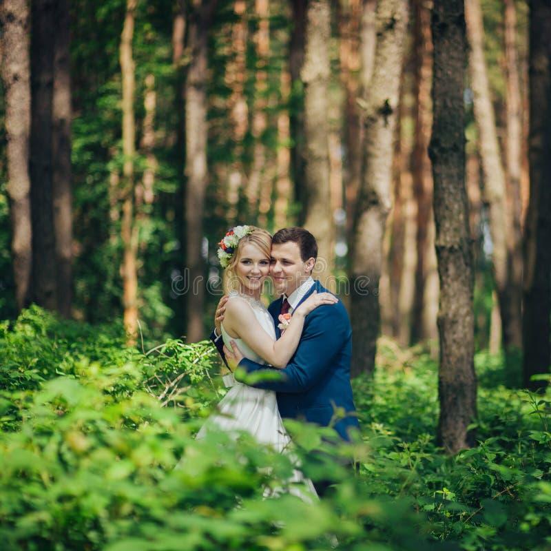 Novia y novio jovenes elegantes de lujo en la primavera su del fondo imagen de archivo