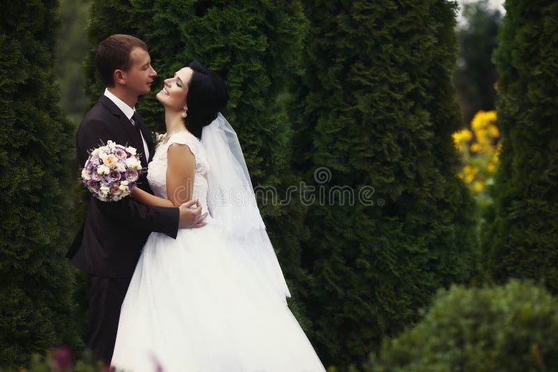 Novia y novio magníficos apacibles románticos en el fondo del MES foto de archivo libre de regalías