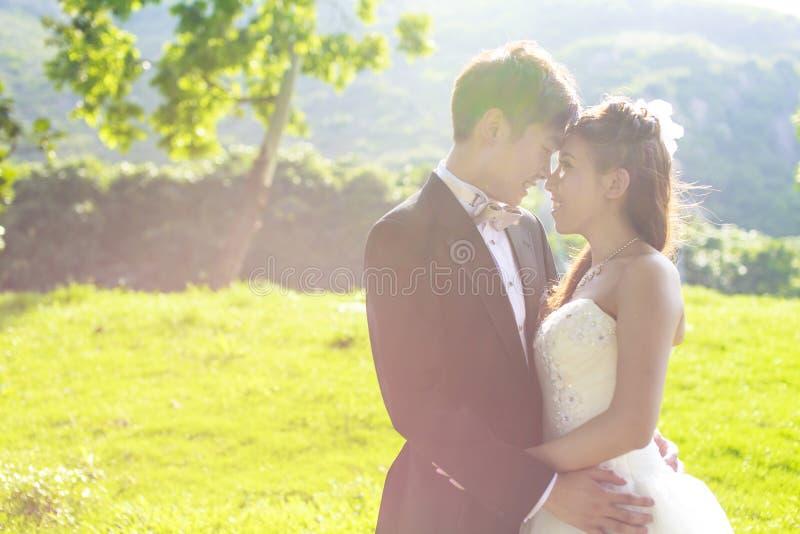Novia y novio que rodean por luz del sol de oro natural foto de archivo