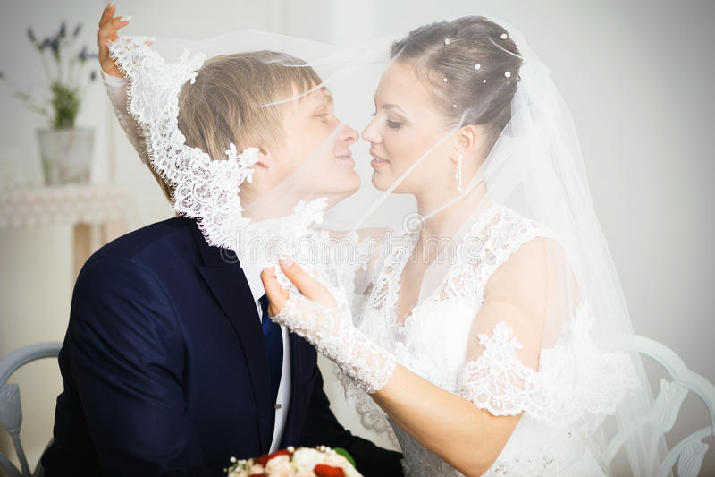 Novia y novio que se besan bajo velo imágenes de archivo libres de regalías