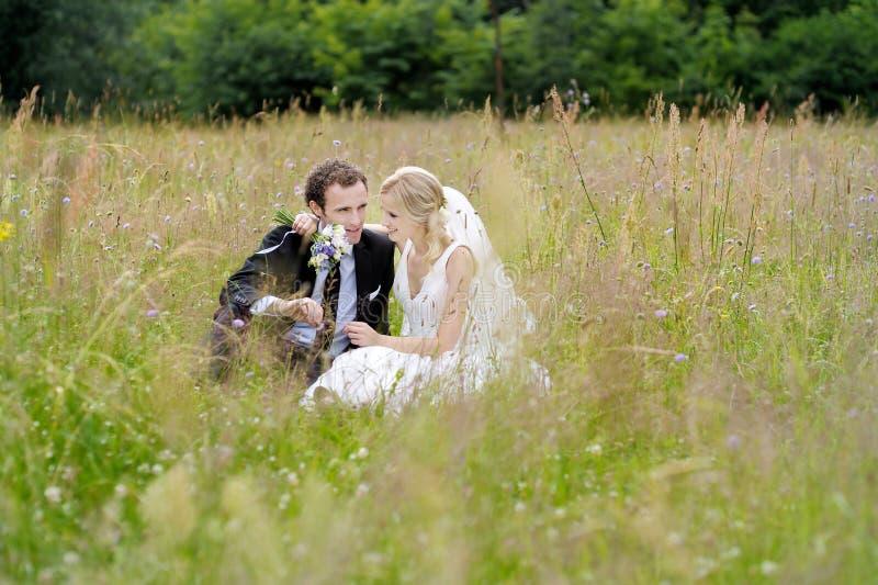 Novia y novio que se sientan en un prado imágenes de archivo libres de regalías
