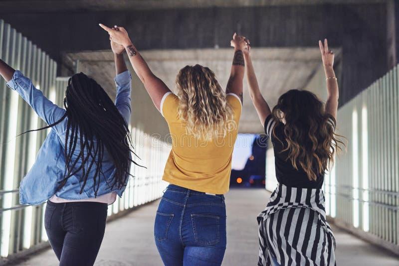 Novias despreocupadas que llevan a cabo las manos y que caminan junto en la c foto de archivo libre de regalías