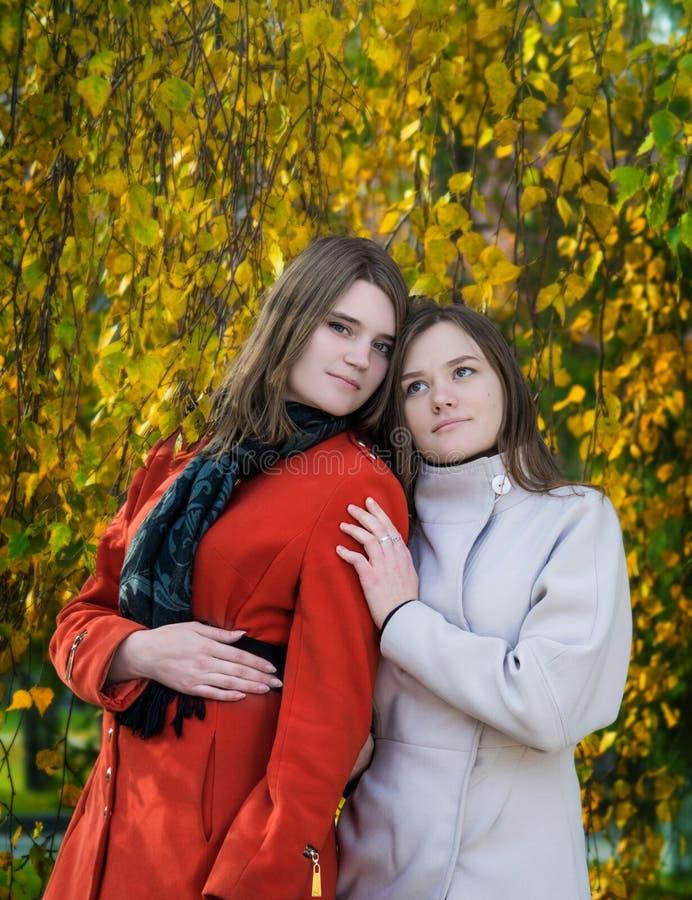 Novias felices hermosas del retrato dos en un día soleado del otoño imagenes de archivo