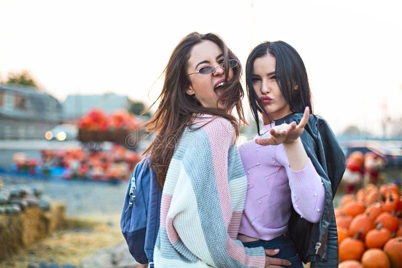 Novias jovenes hermosas de moda junto en el fondo del remiendo de la calabaza de oto?o fotos de archivo