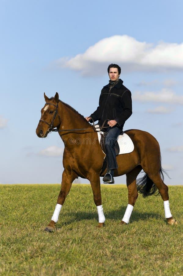 Novice Horse Rider Stock Photos