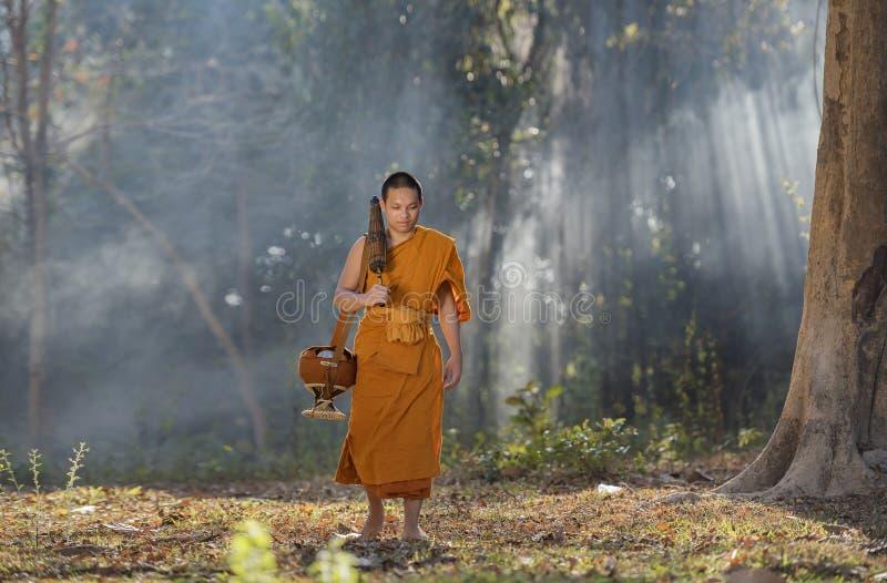 Novice monk royalty free stock photo
