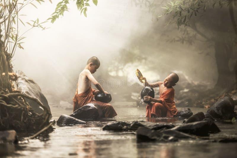 Novice Monk royalty free stock images