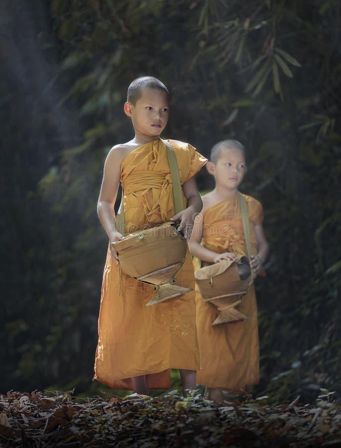 Novice monk stock image